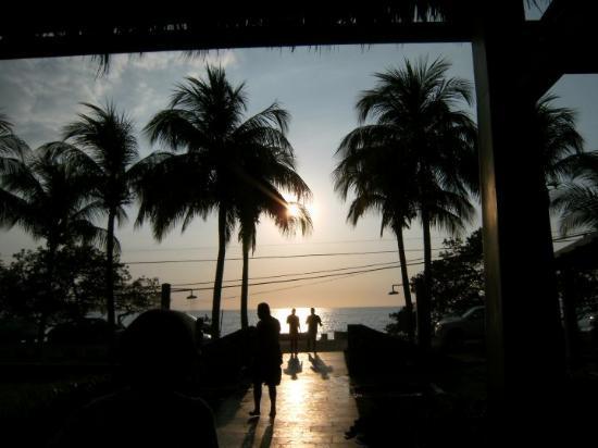 Bilde fra Flamingo Beach Resort And Spa