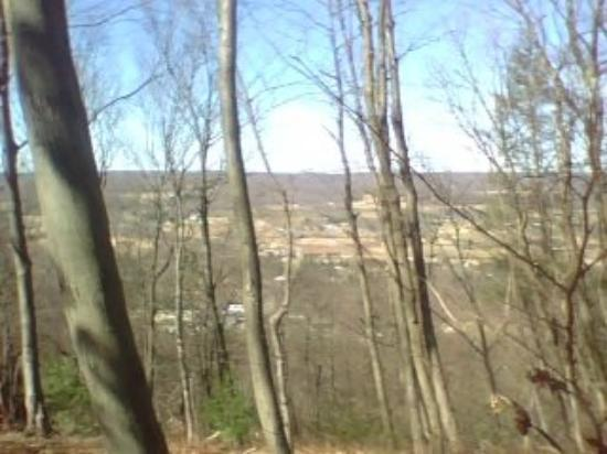 Lehighton, Пенсильвания: View outside my home atop Mahoning Mtn, 1400 ft elevation
