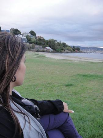 Sullivans Cove : Deep thinking about .........