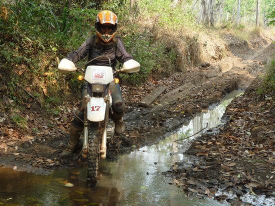 Hidden Cambodia Adventure Tours: The bike