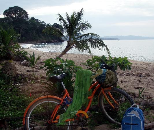 Korrigan Lodge: Great snorkling 5 min away - bike and snorkle mask provided