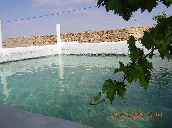 Palm Inn: Le bassin pour faire trempette..
