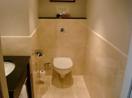 InterContinental Hotel Warsaw : toilettes