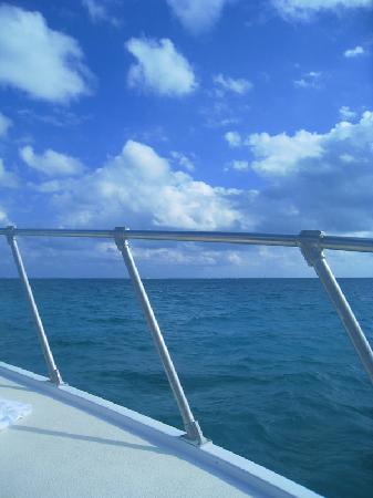 Captain Marvin's: uno sguardo sul mare..