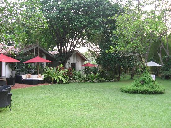 The Wallawwa garden