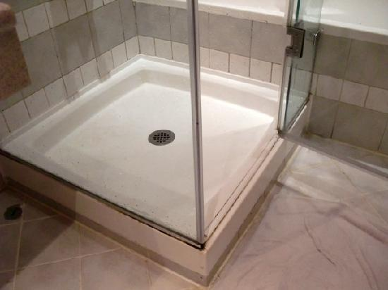 Hilton Alexandria Green Plaza: Rust and mold around the shower cubicle