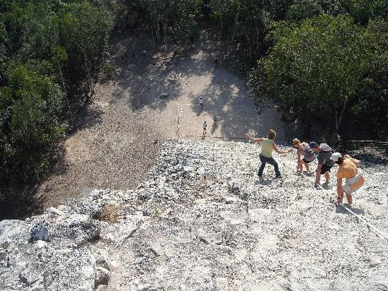 Hotel Riu Tequila: view from top of coba