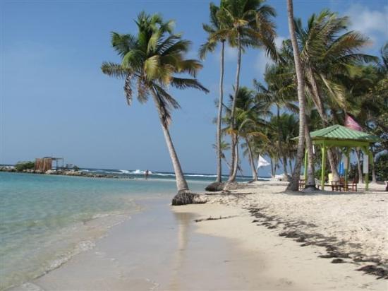 Sainte-Anne, Guadeloupe: Toujours st Anne