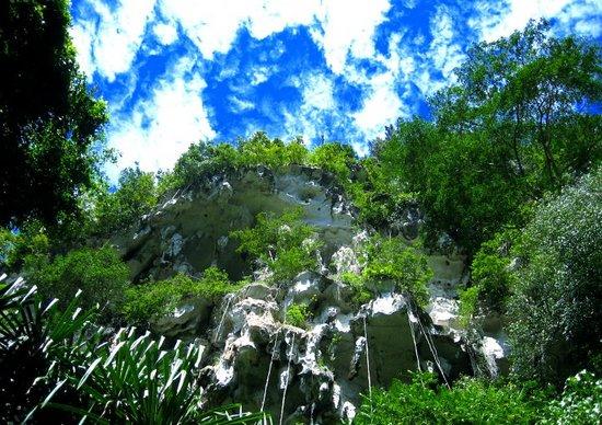 Kalimantan, Indonesia: Klettereinladung