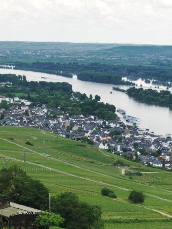 Ruedesheim am Rhein, Tyskland: Min ynglings udsigt ned over markerne med udsyn til Rüdesheim og Rhinen