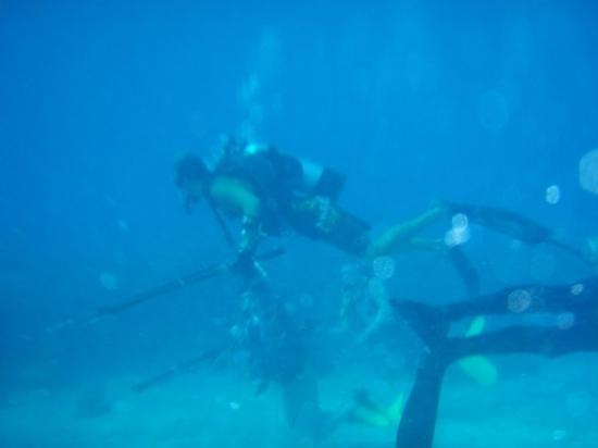 Maraton, FL: there were three scuba divers who were on the boat and they were trying out spear fishing - they