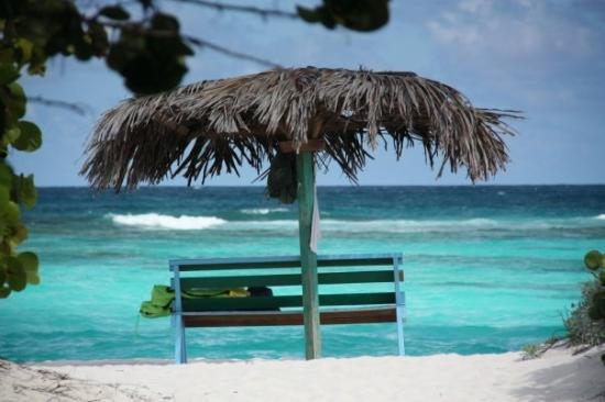 Tortola: Anegada, Caribbean