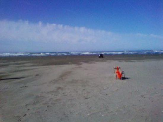 Motorcycle maintenance done + Spring Break + Sunny Day = Ted goes on a road trip Ocean Shores,