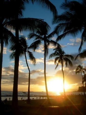 Waikiki Beach: waikiki.