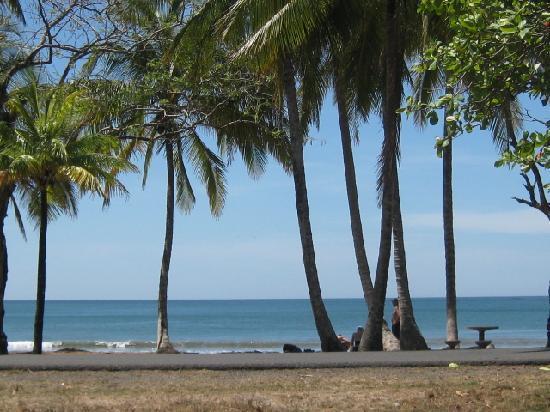 Casa Buenavista: clean beach