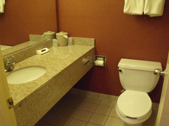 Red Roof Inn Hardeeville: bath room