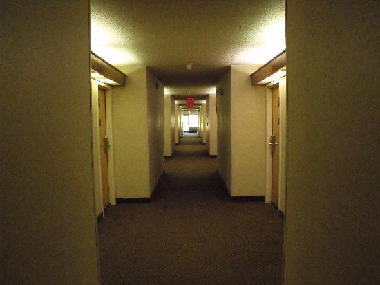 Red Roof Inn Hardeeville: Motel Hallway