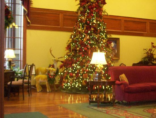 The Inn at Christmas Place: lobby tree
