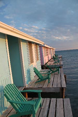 Hugh Parkey's Belize Adventure Lodge: Back deck on the room