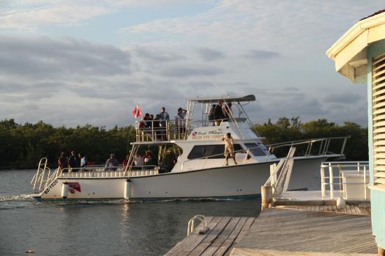 Hugh Parkey's Belize Adventure Lodge: The dive boat