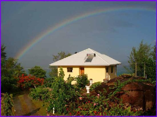 Jardin Marron: protected by the Rainbow