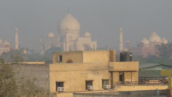 Hotel Sheela Inn: rooftop view