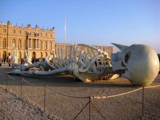 Versailles picture of versailles yvelines tripadvisor for Attraction yvelines