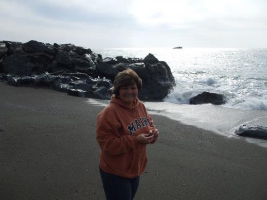 Bodega Bay, CA: I found lots of cool rocks!
