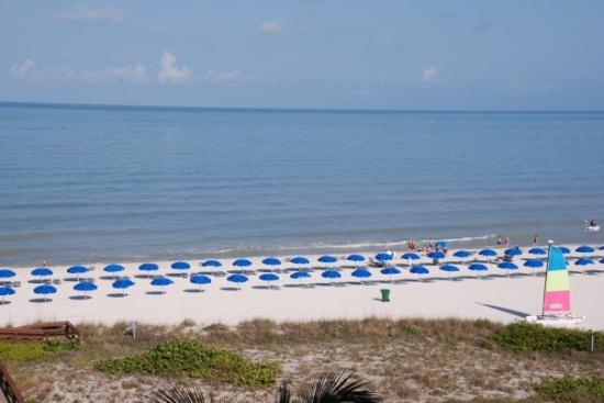 Marco Island, FL: Beautiful Beach!