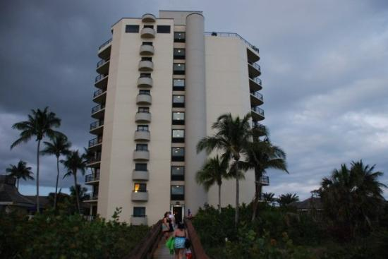 Marco Island Hilton, view from the beach.