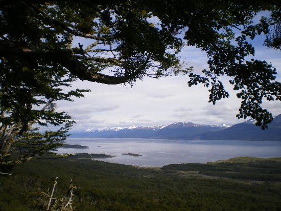 Hostal Akainij: View of the Beagle Channel