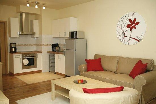 Central Passage Budapest Apartments: studio