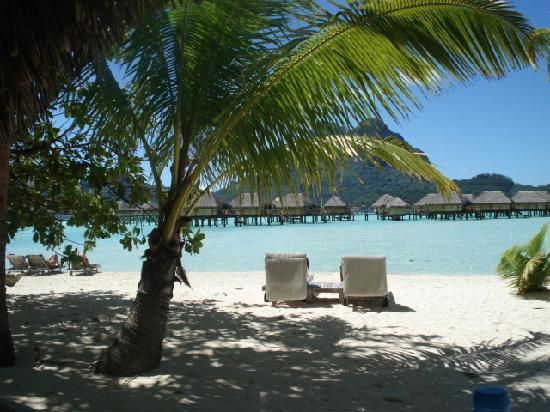 Bora Bora Pearl Beach Resort & Spa: View from our beach bungalow