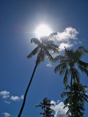 Pousada Poesia: Sole dei tropici.....