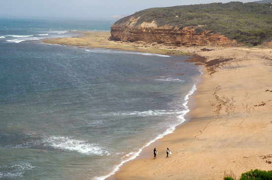 Wiktoria, Australia: Great Ocean Road: Bells beach