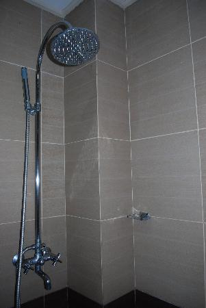 Beaumont Pension House: shower
