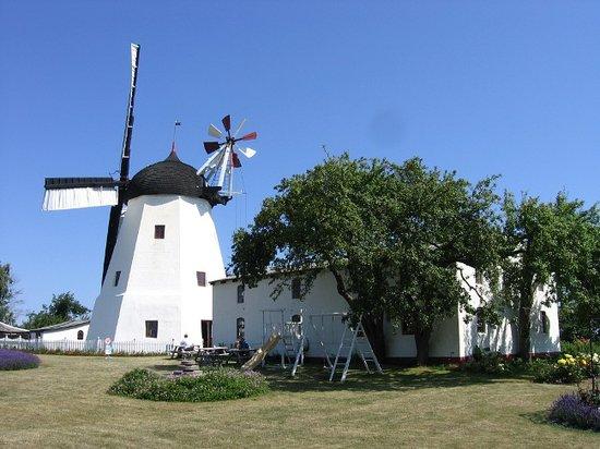 Bornholm, الدنمارك: Bornholm - windmil