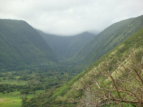 Waipio Rim: View of the valley from the 3rd switchback