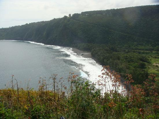 Waipio Rim: Beach from the 3rd switchback