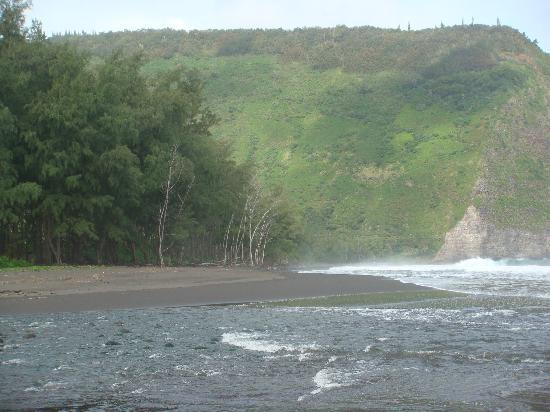Waipio Rim: View on the deserted black sand beach at 11 AM