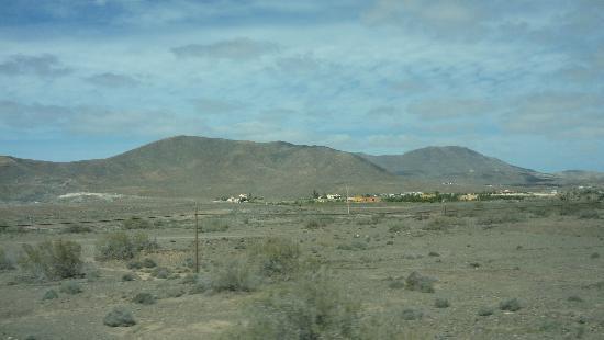 Fuerteventura Princess: Typical Landscape