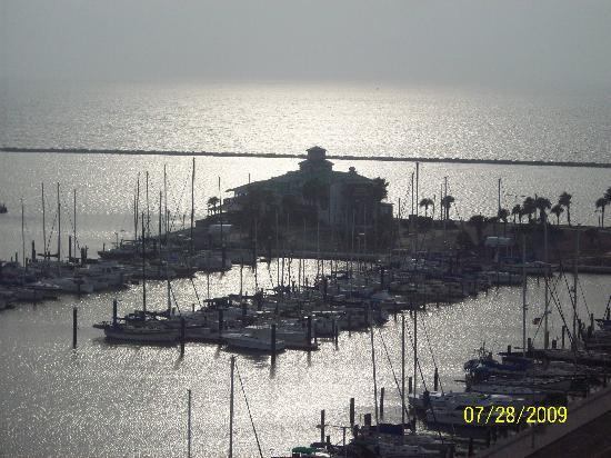 Best Western Corpus Christi: the view at breakfast