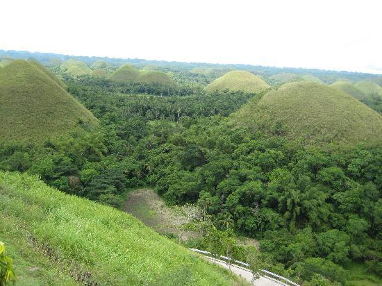 Chocolate Hills Natural Monument: Chocolate hills 1
