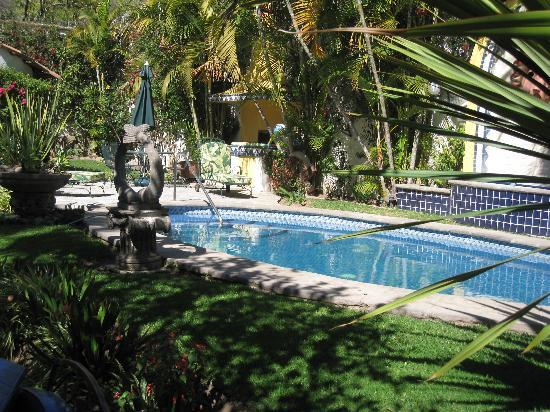 Quinta del Sol: Gardens and heated pool