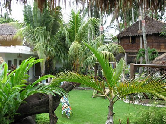 El Dorado Beach Resort : The grounds