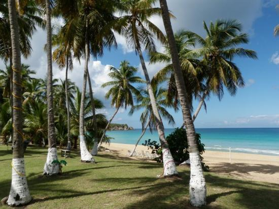 Lambert Beach Tortola