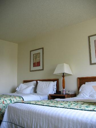 Fairfield Inn & Suites Spokane Downtown : Fairfield Inn - Room