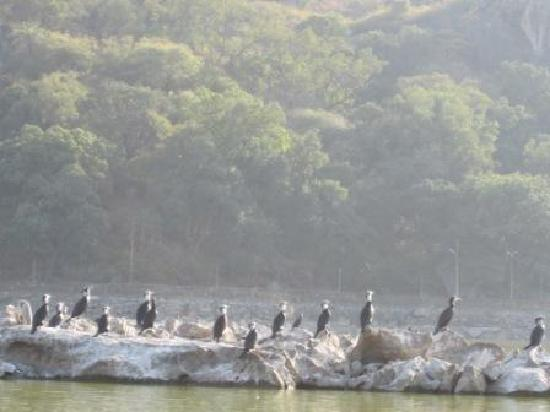 Mount  Abu: Nakki Lake