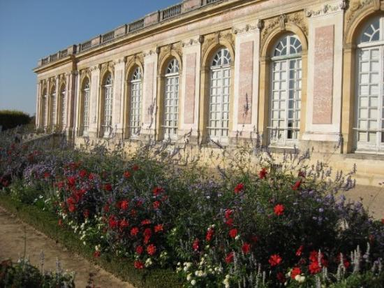Le grand trianon versailles photo de versailles for Versailles yvelines