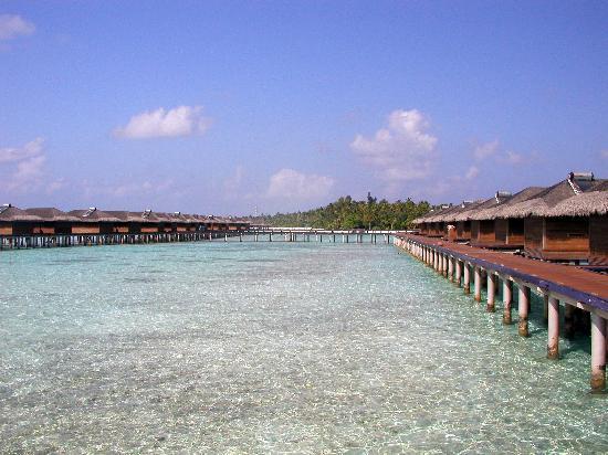 Medhufushi Island Resort: water villas